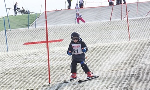 Everyone Active at Silksworth Sports Centre: One Hour of Skiing or Snowboarding, or Lessons at Everyone Active at Silksworth Sports Centre (Up to 49% Off)