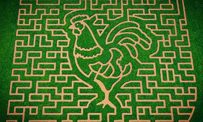 Stewart Farms - Pleasantburg: Fall Activities and Corn Maze for Two or Four at Stewart Farms (Half Off)