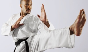 Premier Martial Arts Southlake: $45 for $100 Worth of Services at Premier Martial Arts Southlake
