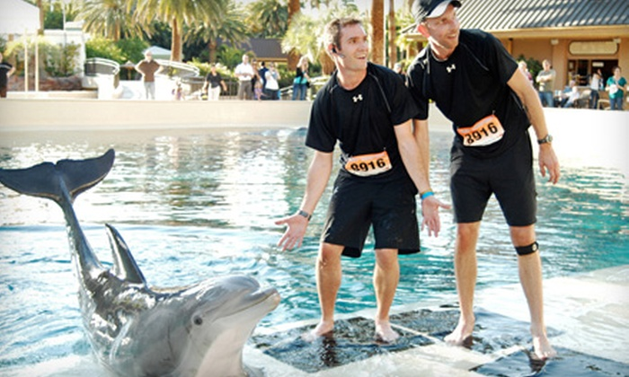 Red Frog Events - Hollywood: Entry for a Team of Two, Three, or Four to Great Urban Race on Saturday, April 20 (Up to 54% Off)