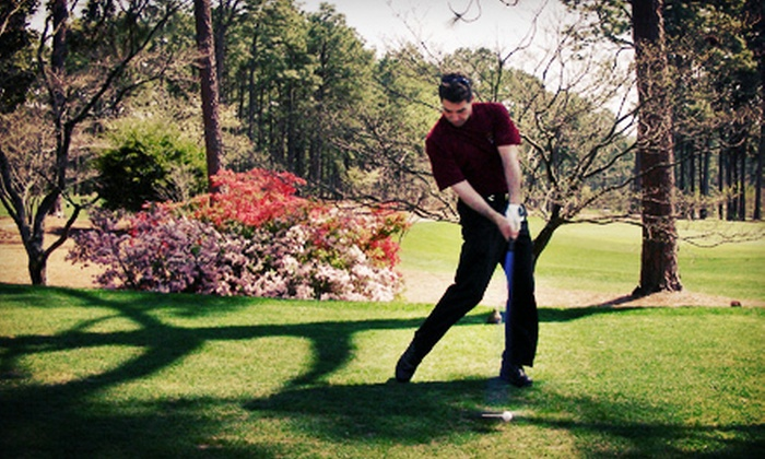 Golfer on the Go - Markham: $129 for a Playing Lesson with Swing Analysis and Short-Game Clinic from Golfer on the Go ($354.82 Value)