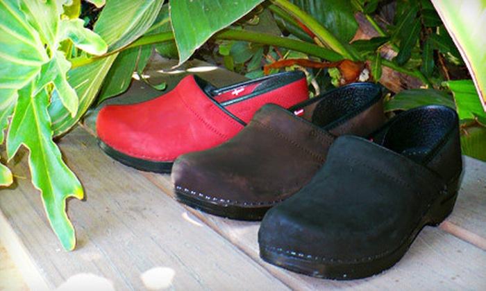 Clogkingdom.com: $45 for $90 Worth of Shoes from Clogkingdom.com