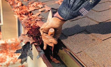 Gutter Cleaning for Up to 100 or 200 Linear Feet, or Moss Treatment from Sparkle Clean (Up to 72% Off)