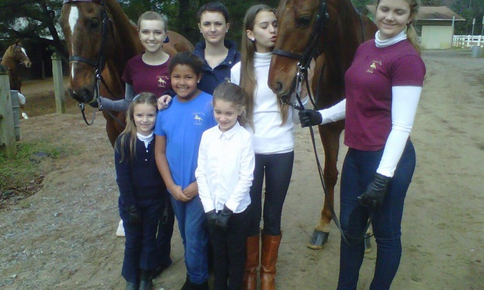 Dreamview Stables - Brooksville: Two Horseback-Riding Lessons at Dream View Stables (65% Off)