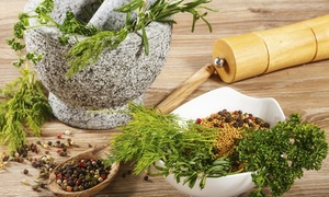 MHz  Regenerative Health: $35 for $125 Worth of Naturopathy — MHz  Regenerative Health