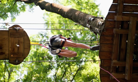 $33 for a Zipline Tour for One at Ocoee Zipz ($79 Value)