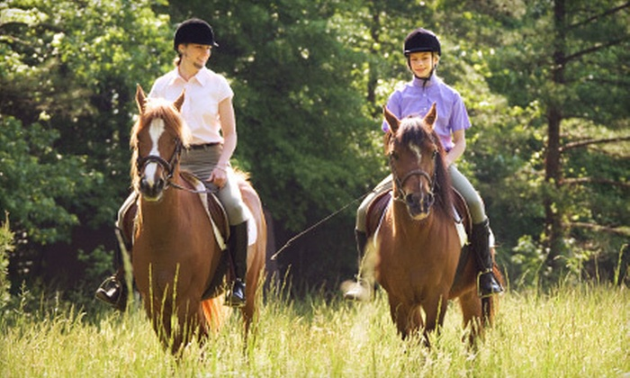 Fruition Farm - Fairburn: Mini Horseback-Riding Lesson and Private Trail Ride for One or Two at Fruition Farm (Up to 56% Off)