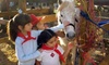 Up to 54% Off Petting Zoo and Pony Rides