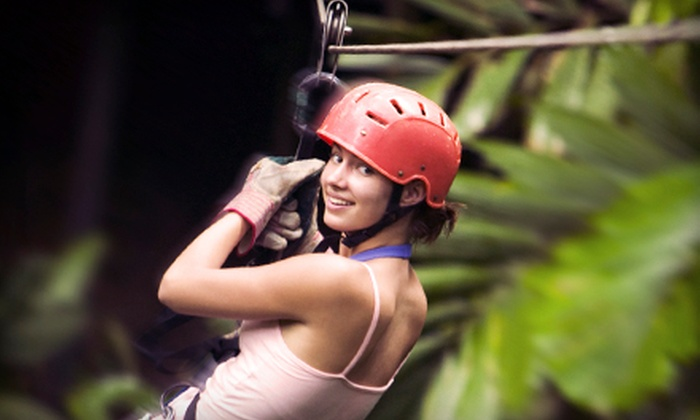Woodbury Ski Area - Woodbury: Four Zipline Rides for One or Two People or Daredevil Package at Woodbury Ski Area (Up to 54% Off)