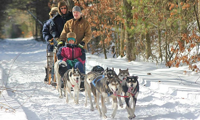 Drift Away Mushing Adventures - West Brookfield: 4- or 10-Mile Dogsledding Tour for 2 or 4 from Drift Away Mushing Adventures (Up to 56% Off)