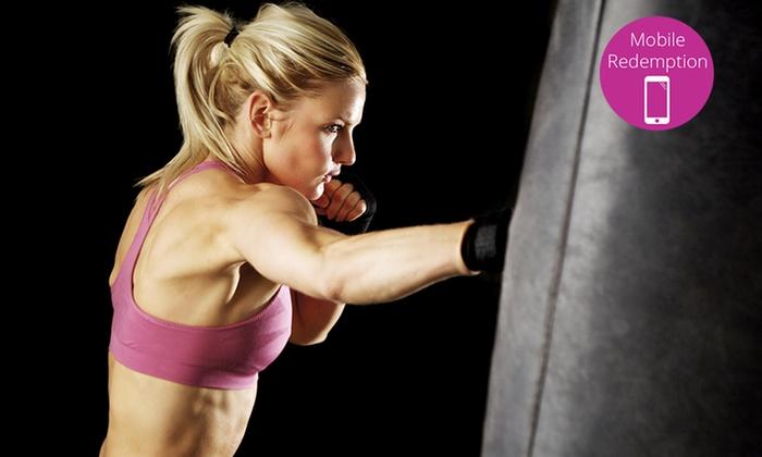 Roxborough Academy of Martial Arts - Littleton: Five Classes or a Month of Unlimited Women Only Kickboxing Fitness (Up to 54% Off)