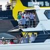 Half Off Sailing-Race Spectator-Yacht Charter