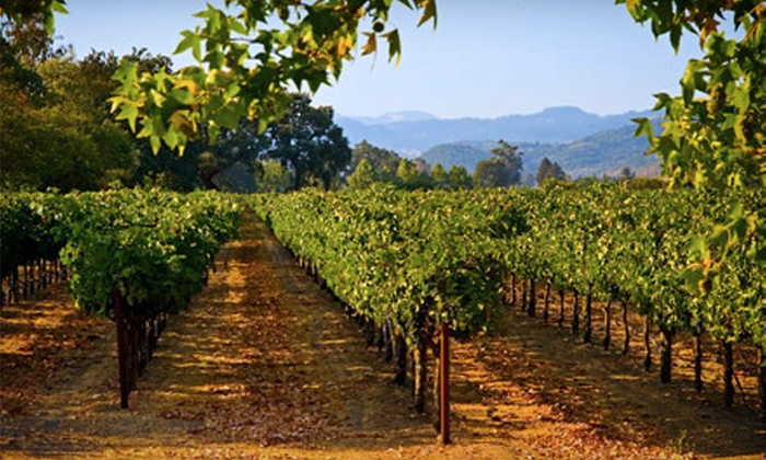 Gray Line - Govalle: Texas Hill Country Wine Tour for Two or Four from Gray Line (Up to 58% Off)