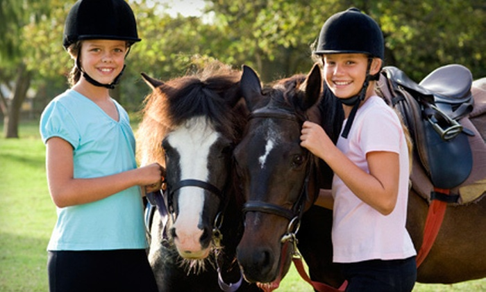 Crossroads Farm - Tierra Madre: Two or Four 60-Minute Horseback-Riding Lessons at Crossroads Farm (61% Off)