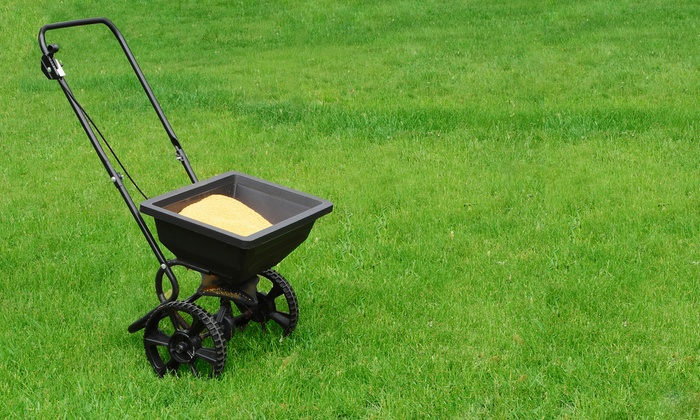 ProLawns - Indianapolis: Fertilizer and Weed and Insect Control, or $25 for $50 Worth of General Lawn Services from ProLawns