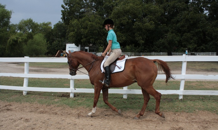 Trinity River Farm & Equestrian Center - Fort Worth: Two Horseback-Riding Lessons at Trinity River Farm Equestrian Center (65% Off)