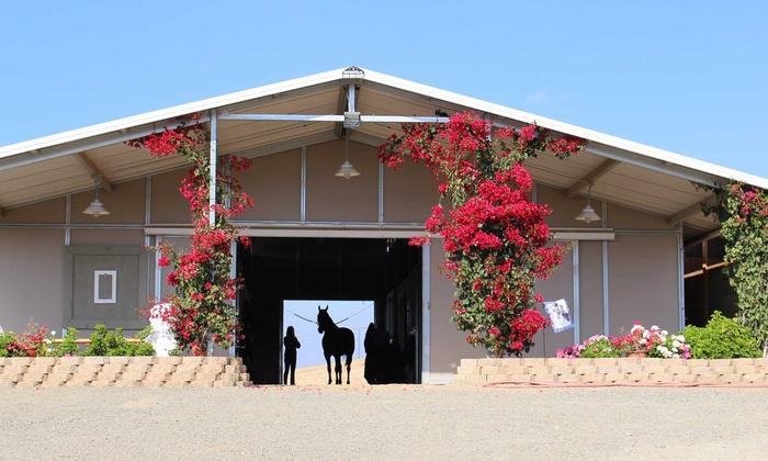 Via Cantata Ranch - Murrieta: $195 for a Half-Day Equestrian Experience for Two at Via Cantata Ranch ($390 Value)