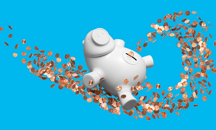 Quirky Porkfolio App-Enabled Piggy Bank: Quirky PorkfolioApp-EnabledPiggy Bankin Black, Pink, or White. Free Returns.