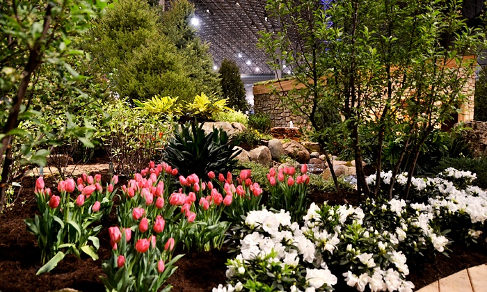Chicago Flower Garden Show in Chicago IL Groupon
