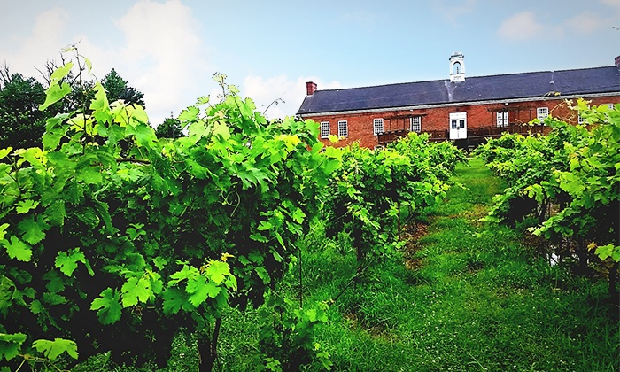 Tidewater Winery - Drumright: $15 for a Wine-Tasting Package for Two at Tidewater Winery ($30 Value)