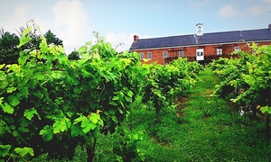 Tidewater Winery: $13 for a Wine-Tasting Package for Two at Tidewater Winery ($30 Value)