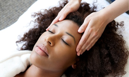 Haircut with Aveda Conditioning Treatment, or Aveda Elemental Nature Facial at Strands Salon and Spa (Up to 59% Off)