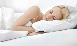 Wildcat Mattress: Two Hypoallergenic Latex Pillows or $600 Towards Latex Mattresses at Wildcat Mattress (Up to 50% Off)