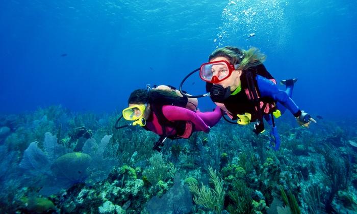 Tropical Adventures Scuba & Travel - Soquel: PADI Scuba-Certification Course with Optional Boat Trip from Tropical Adventures Scuba & Travel (Up to 77% Off)