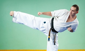 Black Belt Martial Arts And Boxing: $38 for $69 Worth of Martial-Arts Lessons — Black Belt Martial Arts and Boxing