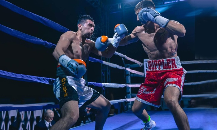 Image result for Boxing Pro
