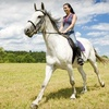 Up to 55% Off Horseback Trail Ride
