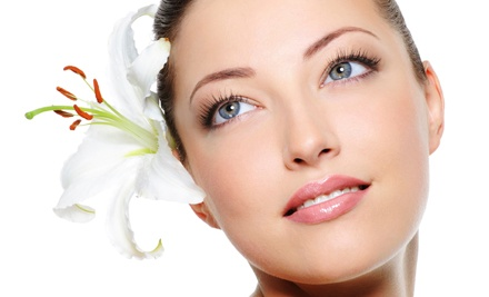 Mini Facials and Body Wraps at Restorations Holistic Skin Care Services (Up to 67% Off). Three Options Available.