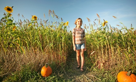 Corn-Maze Visit for Two or Four at Phillips Farms  (40% Off)