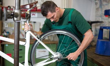 Komplettinspektion von 1 oder 2 Fahrrädern oder E-Bikes in Markus Osters Bikeshop (bis zu 73% sparen*)
