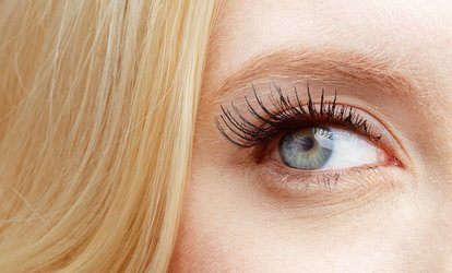 image for $60 for Dry-Eye Testing, Results, and Treatment for One at Elite Vision Center ($130 Value)