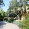 62% Off 60-Minute Landscape Design Consultation