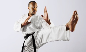 Ahrang Martial Arts: Two or Three Kickboxing Classes Per Week for One Month at Ahrang Martial Arts (79% Off)