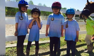 Waldera Riding Lessons: $48 for $160 Worth of Services — Waldera Riding Lessons
