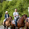 Up to 50% Off Horseback Riding in St. Clair