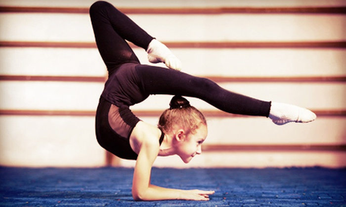 Omega Sports Centre - Mayfair/Pacific Reach: $94.99 for a Two-Week Under the Sea Gymnastics Summer Camp August 16–30 at Omega Sports Centre ($195 Value)
