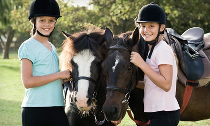 Allimax Farm - Columbia: 60-Minute Horseback Trail Ride for Two or Four at Allimax Farm (Up to 53% Off). Four Options Available.