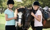 Up to 53% Off Horseback Trail Ride at Allimax Farm