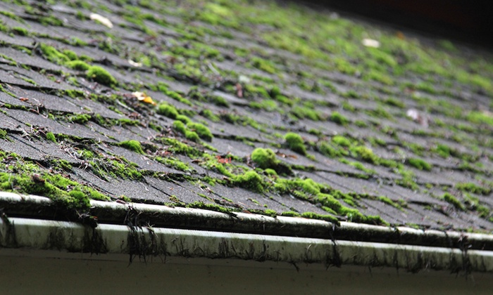 Window Works Property Services - Snoqualmie Valley: $159 for Roof Cleaning and Organic Moss Treatment from Window Works Property Services (Up to 60% Off)