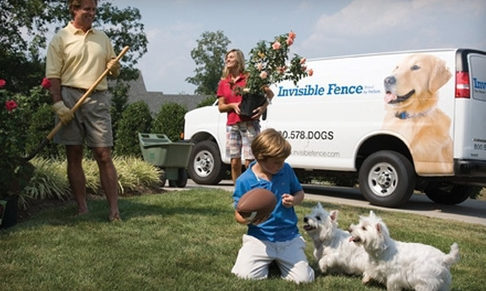 Invisible Fence of Greater Louisville - Louisville: $599 for an Invisible Fence and Two Pet-Training Sessions from Invisible Fence of Greater Louisville ($1,324 Value)