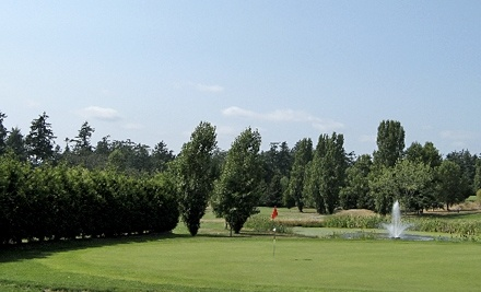 Nine-Hole Round of Golf for Two or Four with Cart Rental at Royal Oak Golf Club (Up to 54% Off)