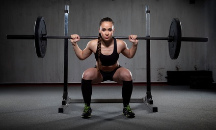 10 Class Pass or One Month of Unlimited Classes at CrossFit Sherman Oaks (Up to 74% Off)