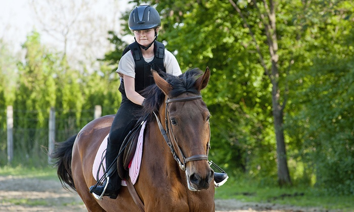 Full Moon Farm - 4, Woolerys: 90-Minute Introductory Horseback-Riding Program for One or Two at Full Moon Farm (Up to 69% Off)