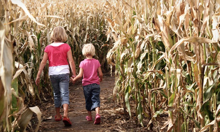 Stony Hill Farms - Stony Hill Farms: Corn Maze Visit for Two, Four, or Six at Stony Hill Farms (Up to 58% Off)