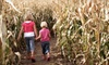 Stony Hill Gardens - Upper Vailsburg: Corn Maze Visit for Two, Four, or Six at Stony Hill Farms (Up to 58% Off)
