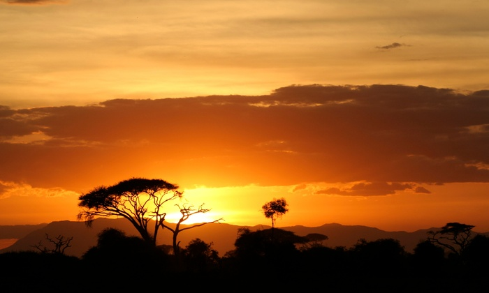 6-Day Kenya Safari with Airfare